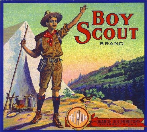 collectibles from the past    Boy Scouts Fruit Crate Label     collectible    vintage collectibles