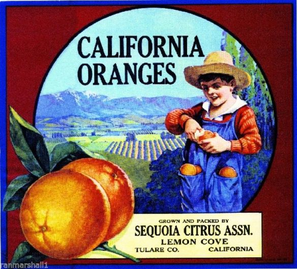 collectibles from the past    California Orange Fruit Crate Label 2     collectible    vintage collectibles