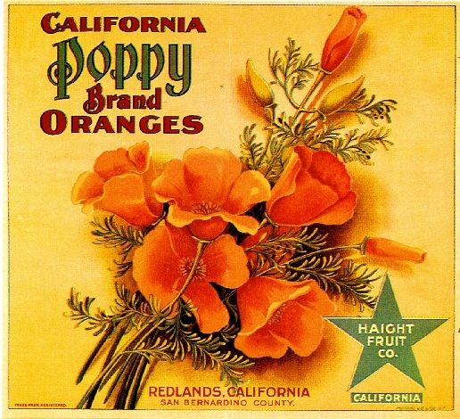 Collectibles from the past  California Poppy Fruit Crate Label    collectibles collecting   collection   artwork of fruit crate labels