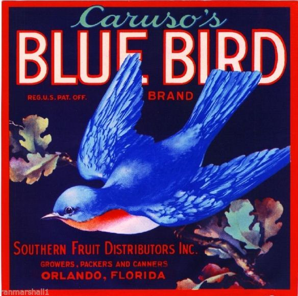 Collectibles from the past  Caruso's Blue Bird Fruit Crate Label    Collectibles