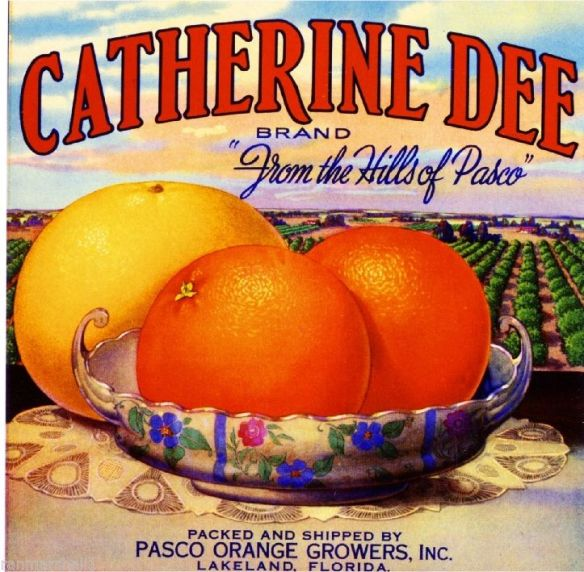 collectibles from the past    Catherine Dee Fruit Crate Label    collectibles   collection  collecting  artwork of fruit crate labels