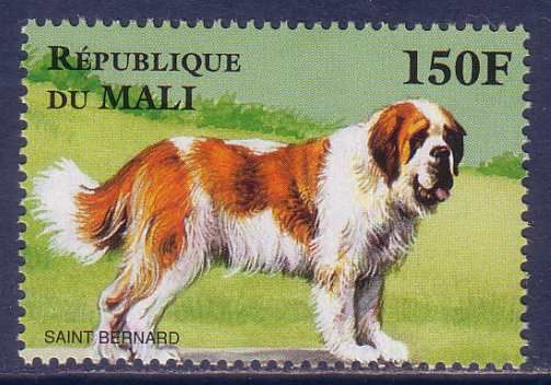 stamps  stamp collection  collectibles   Saint Bernard Dog Mali stamp  stmap collecting collectibes from the past  african stamp